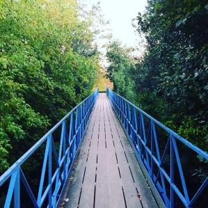 Le pont vers l'ouverture d'esprit, à emprunter d'urgence (c) cdo